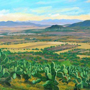 Valle de Tezontepe Hgo.