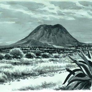 Camino al Volcán Tecajete