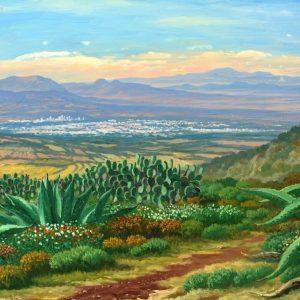 Vista a Hichapan Hidalgo
